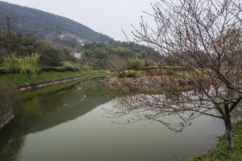 Het Nationale Geologische Park van Zhejiangchangxing royalty-vrije stock foto's