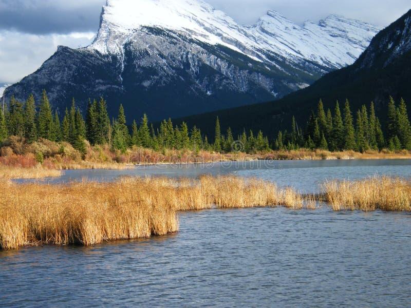 Het Nationale Park van Banff stock fotografie