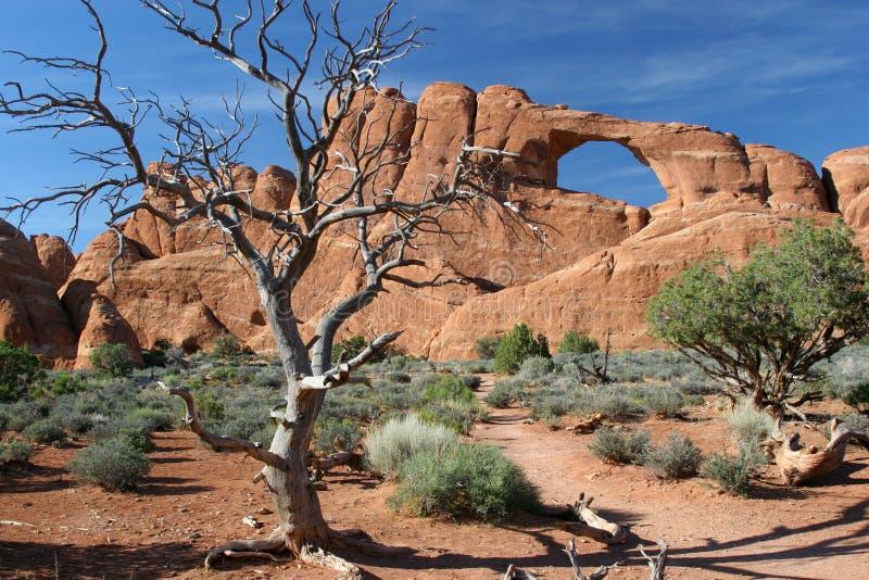 Het Nationale Park van bogen royalty-vrije stock fotografie