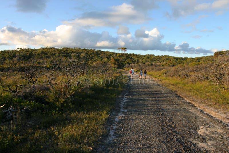 Het Nationale Park van Booderee. De Baai van Jarvis. Australië. stock foto's