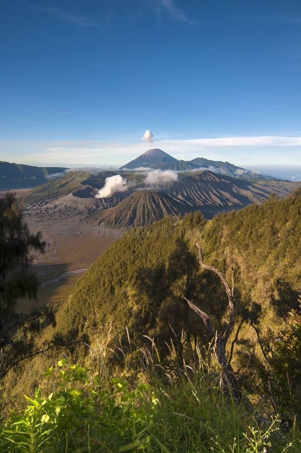Het Nationale Park van Bromotengger Semeru in Oost-Java, Indonesi royalty-vrije stock afbeeldingen