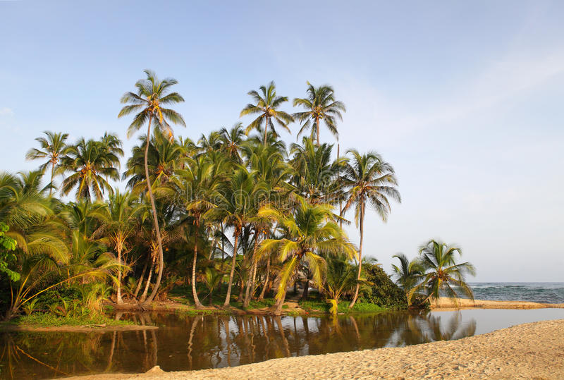 Het nationale park van Cabo San Juan Beach Tayrona, Colombia stock foto