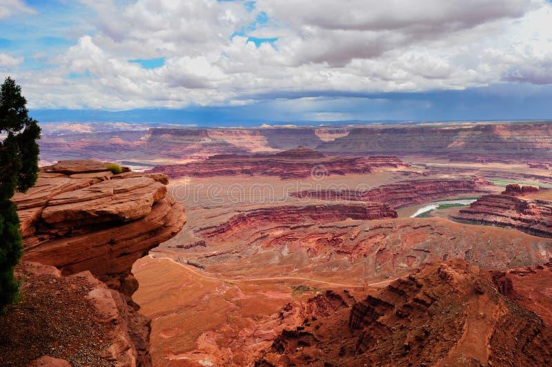 Het nationale park van Canyonlands stock fotografie