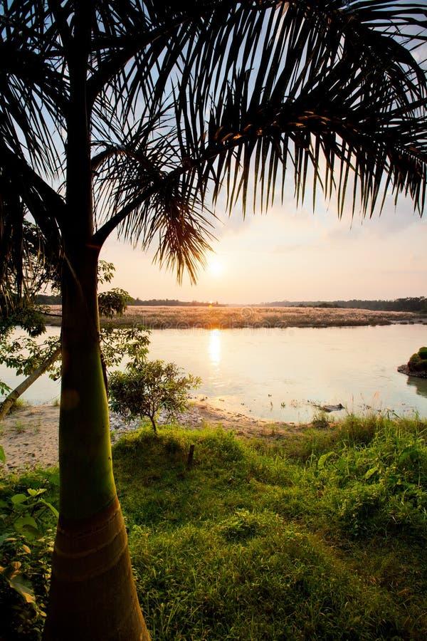 Het nationale park van Chitwan royalty-vrije stock afbeeldingen