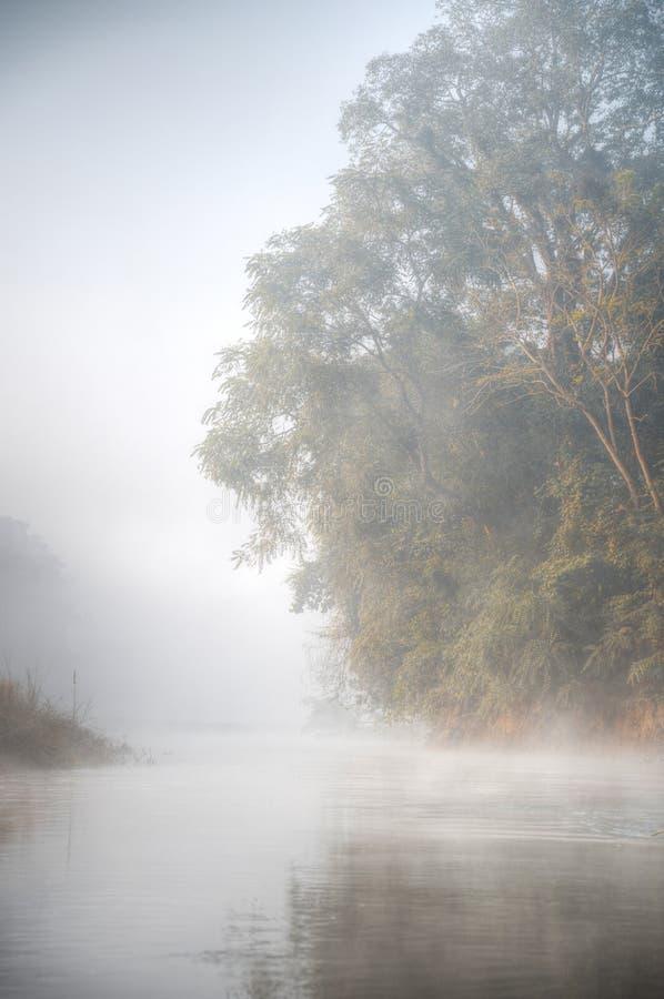 Het nationale park van Chitwan stock fotografie