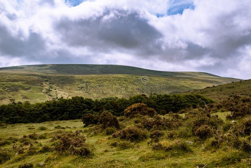 Het Nationale Park van Dartmoor stock fotografie