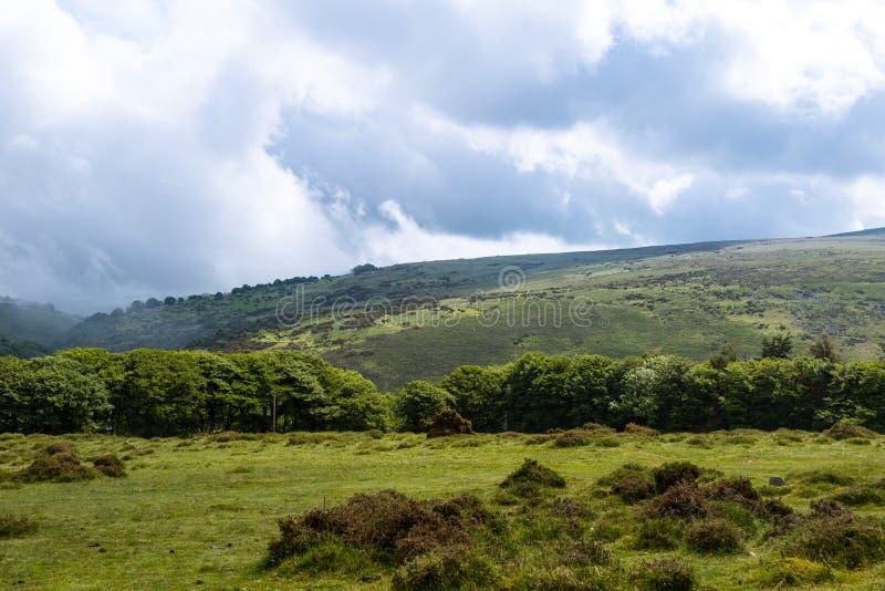 Het Nationale Park van Dartmoor stock afbeelding