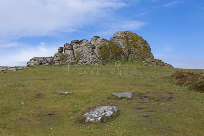 Het Nationale Park van Dartmoor royalty-vrije stock foto's
