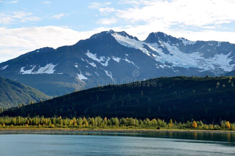 Het Nationale Park van de Baai van de gletsjer stock foto
