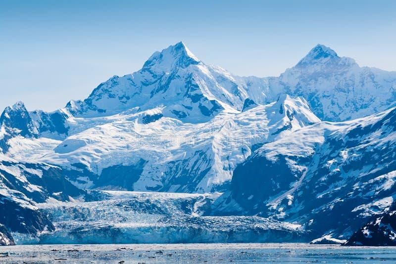 Het Nationale Park van de Baai van de gletsjer in Alaska stock afbeeldingen