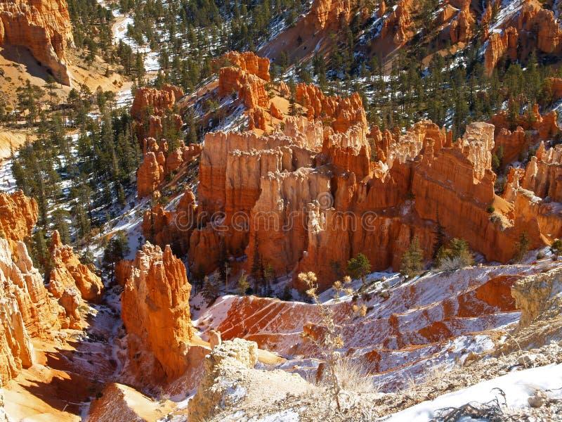 Het nationale Park van de Canion Bryce, Utah stock fotografie