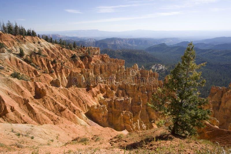 Het Nationale Park van de Canion van Bryce, Utah stock foto