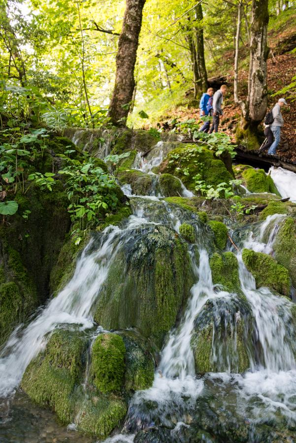 Het Nationale Park van de Meren van Plitvice in Kroatië royalty-vrije stock fotografie