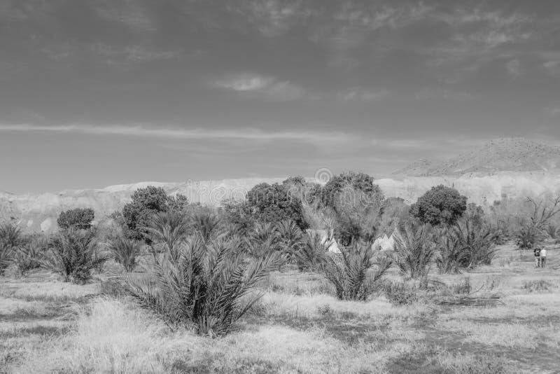 Het Nationale Park van de Vallei van de dood, Californië stock foto
