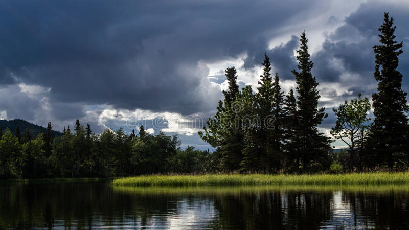 Het Nationale Park van Denali, Alaska de V stock foto