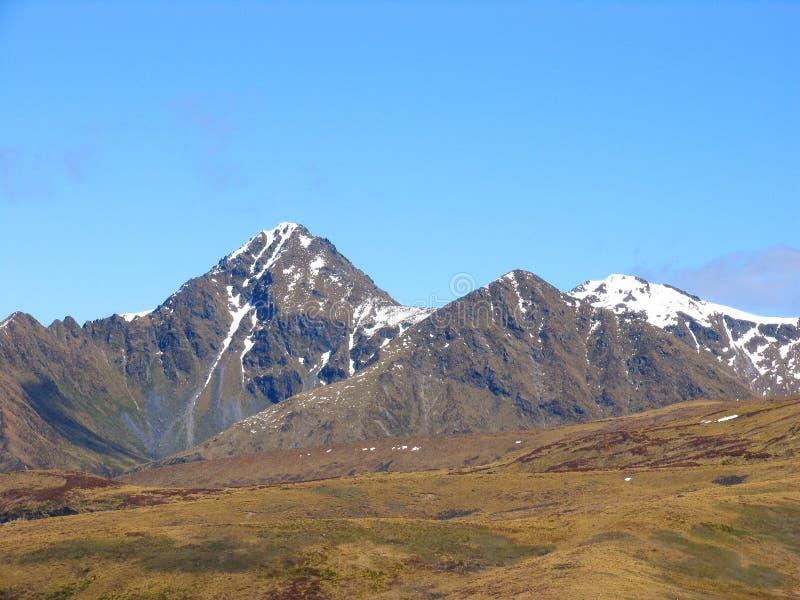 Het Nationale Park van Fiordland (Park2) royalty-vrije stock foto