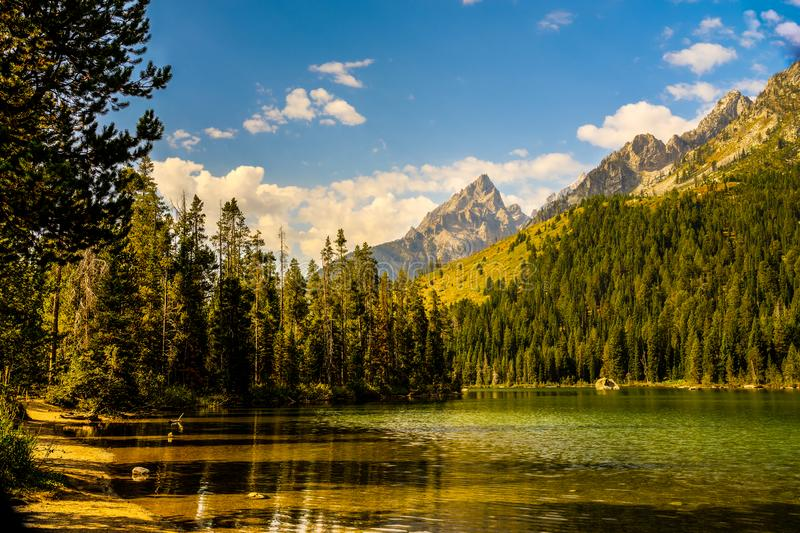 Het Nationale Park van Grand Teton, Wyoming stock foto