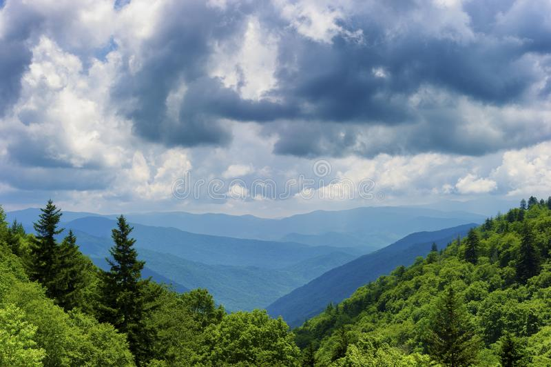 Het Nationale Park van Great Smoky Mountains in de zomer royalty-vrije stock afbeeldingen