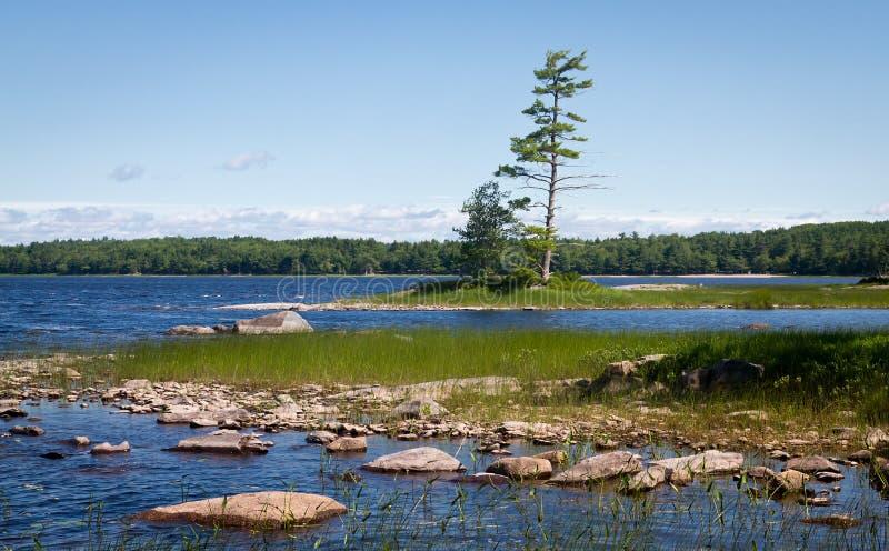 Het Nationale Park van Kejimkujik royalty-vrije stock afbeelding