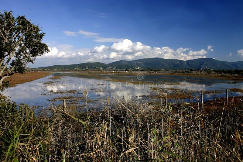 Het Nationale Park van Maremma stock foto's
