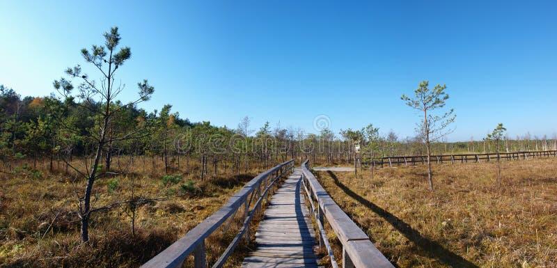 Het Nationale Park van Poleski, Polen royalty-vrije stock afbeeldingen