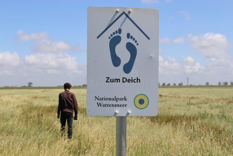 In het Nationale Park van Sleeswijk-Holstein, Noordelijk Duitsland stock afbeelding