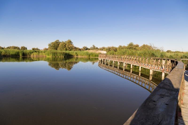 Het Nationale Park van Tablas DE Daimiel, Spanje stock fotografie