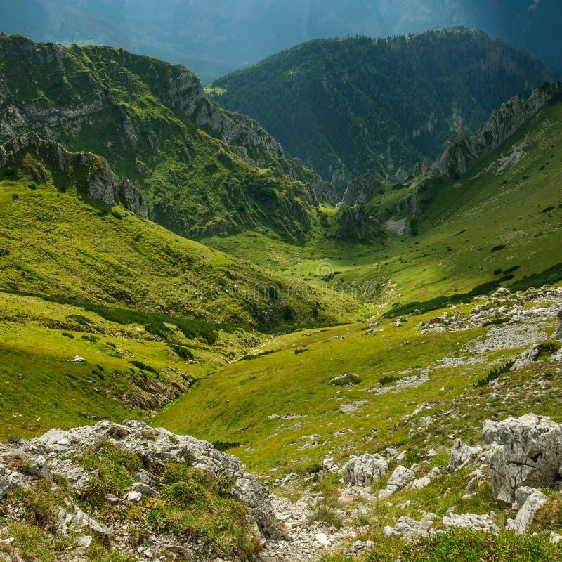 Het Nationale Park van Tatra royalty-vrije stock afbeeldingen