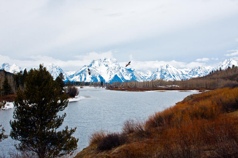 Het Nationale Park van Teton royalty-vrije stock foto