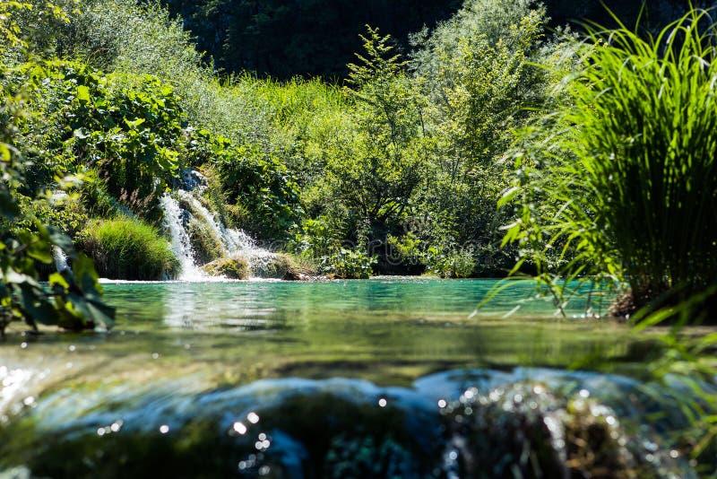 Het Nationale Park van Unesco in Kroatië stock foto
