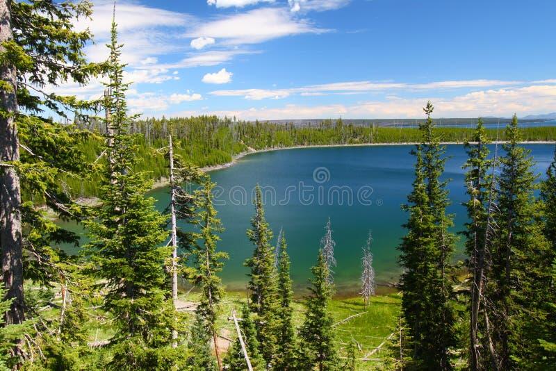 Het Nationale Park van Yellowstone stock foto
