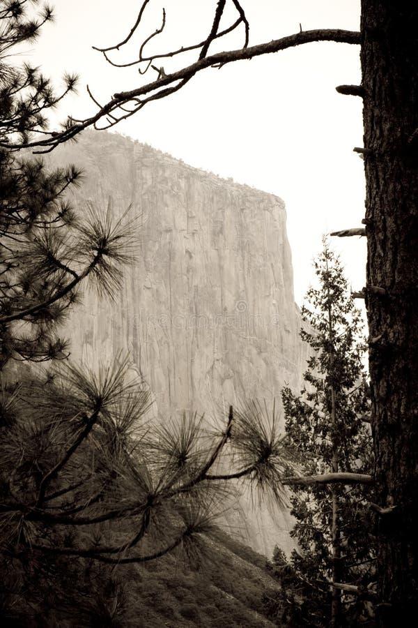 Download Het Nationale Park Van Yosemite Stock Afbeelding - Afbeelding bestaande uit sierra, park: 10777217
