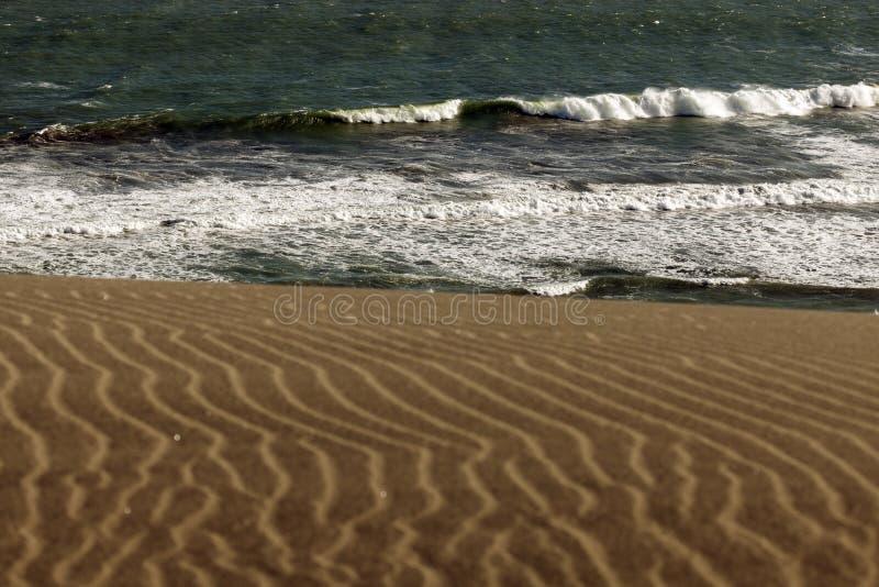 Het Nationale Park van zandduinen stock foto
