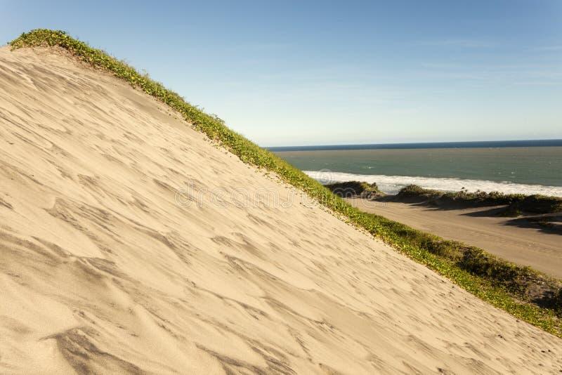 Het Nationale Park van zandduinen royalty-vrije stock afbeelding