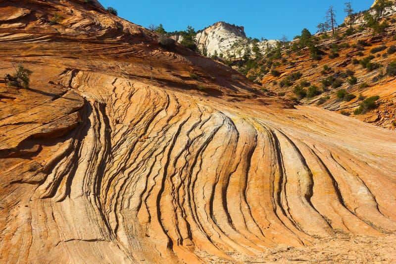 """Het nationale Park van zandsteenpatronen †""""Zion royalty-vrije stock foto's"""