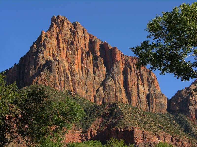 Het Nationale Park van Zion stock foto