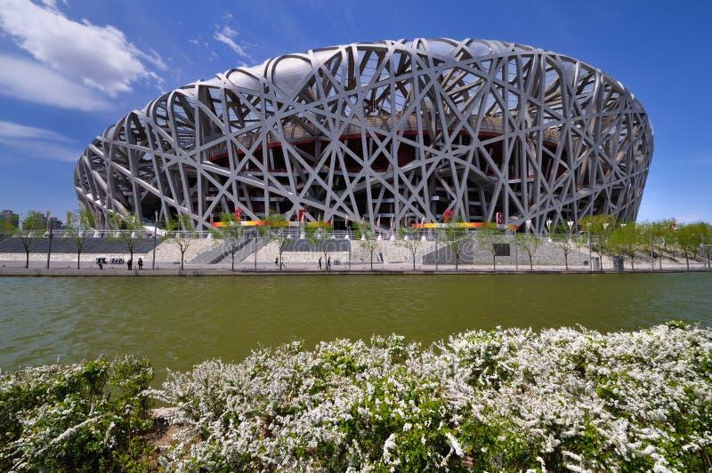 Het Nationale Stadion van China in Peking stock foto's