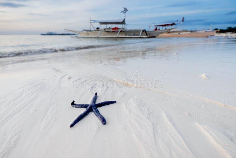 Het natuurlijke bekijken landschap met zeester het strand royalty-vrije stock fotografie