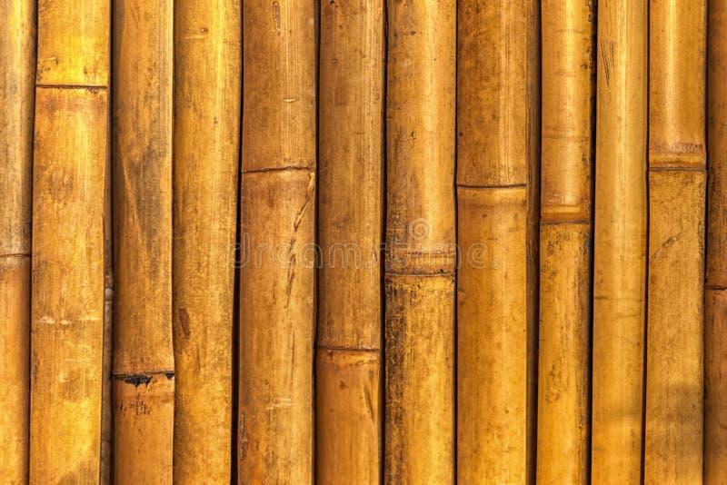 Download Het Natuurlijke Gegroepeerde Hout Van De Bamboetextuur Stock Foto - Afbeelding bestaande uit timmerwerk, elegantie: 107705966