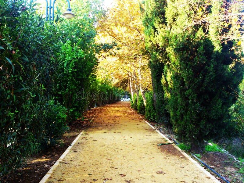 Het natuurlijke milieu is het belangrijkste element van het het park geroepen Lineaire Park van de staat van Nicosia stock foto's