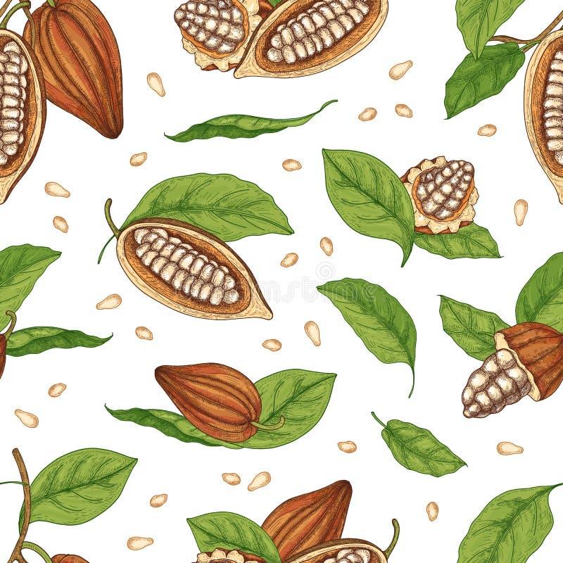 Het natuurlijke naadloze patroon met peulen of vruchten van kokosboom, de bonen of de zaden en de bladeren overhandigen getrokken royalty-vrije illustratie