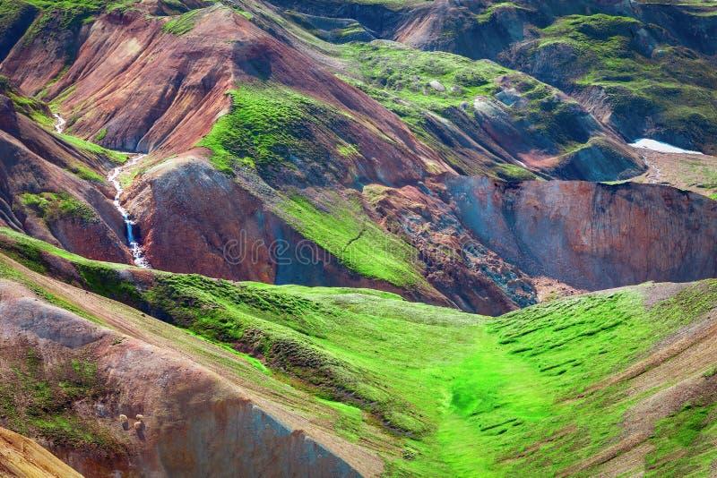 Het Natuurreservaat Centraal IJsland van Landmannalaugarfjallabak stock foto's