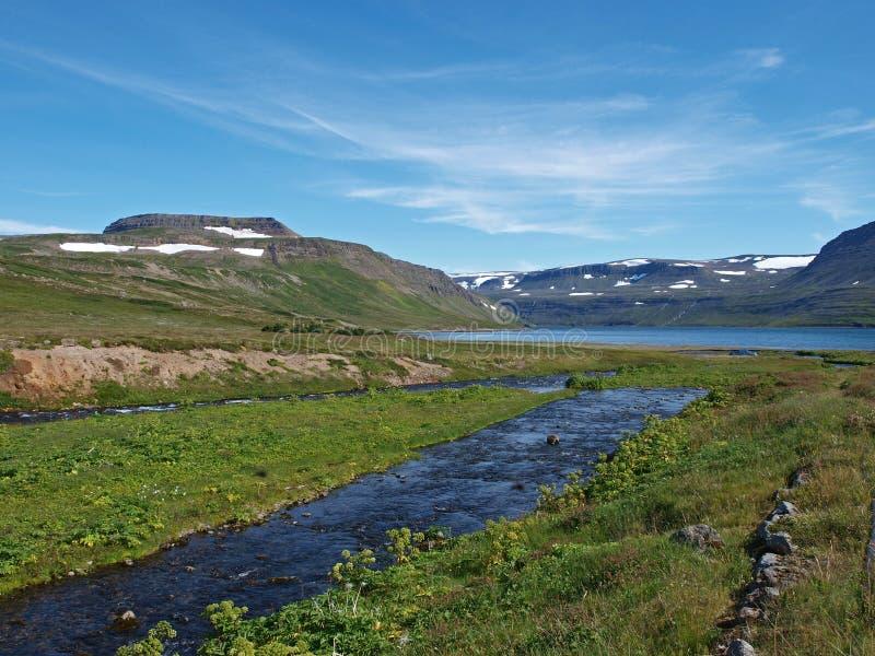 Het natuurreservaat van Hornstrandir, IJsland royalty-vrije stock afbeeldingen