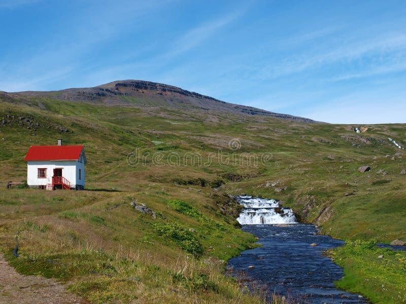Het natuurreservaat van Hornstrandir, IJsland stock afbeelding