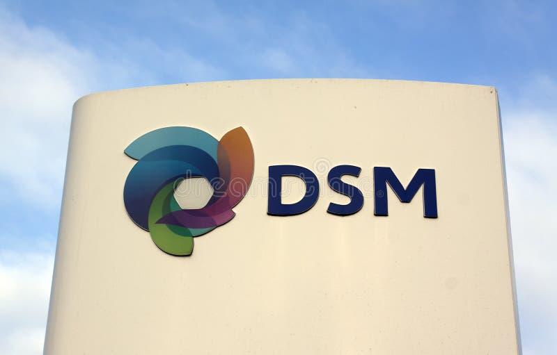 Het Nederlandse chemische bedrijf van DSM NV royalty-vrije stock foto's