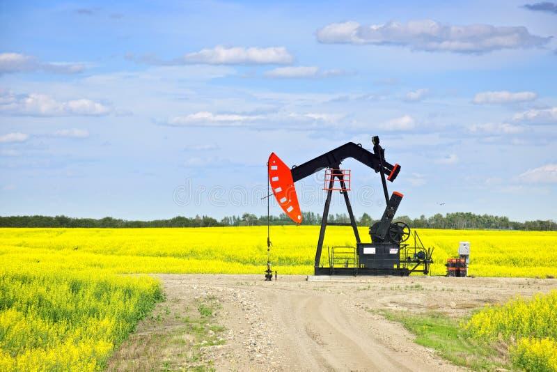 Het neigen van oliepomp in prairies royalty-vrije stock fotografie