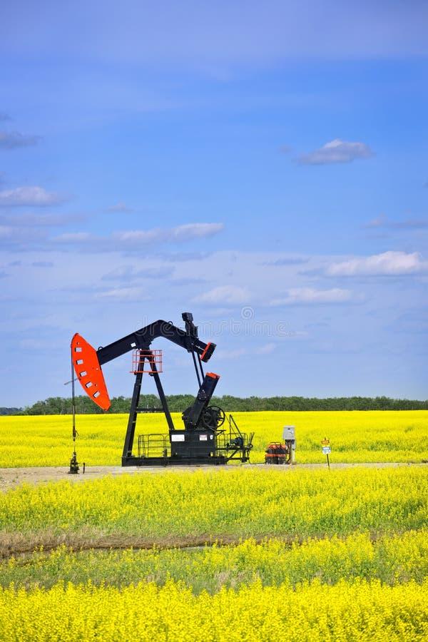 Het neigen van oliepomp in prairies stock foto's