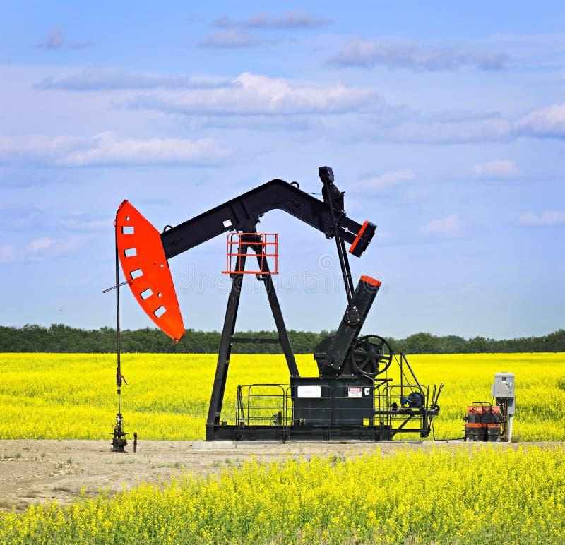 Het neigen van oliepomp in prairies stock fotografie