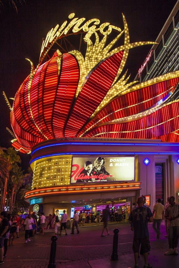 Het Neon van het Hotel van de flamingo, Las Vegas, stock afbeelding