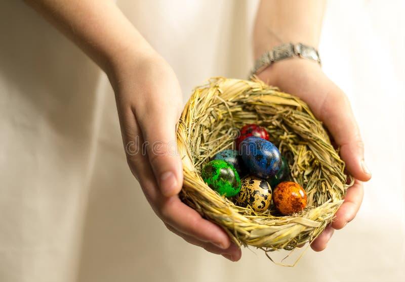 Het nest met eieren in verschillende kleuren worden geschilderd ligt in de palm van de hand die stock foto